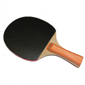 Raquette de tennis de table (ping pong)