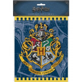 8 Sachets surprises Harry Potter anniversaire